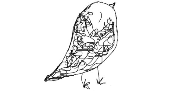 Fadenvogel